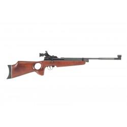 Beeman AR2078, Thumbhole Stock