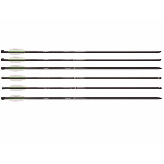 Benjamin Airbow Arrows 26\