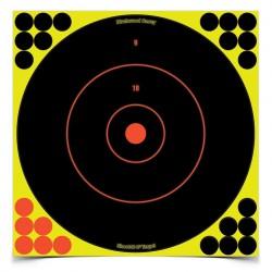 Birchwood Casey Shoot-N-C 12\