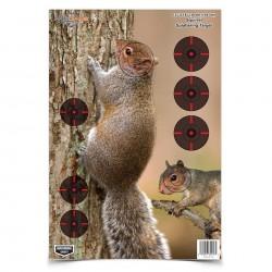 Birchwood Casey Pregame Squirrel Target Game Targets